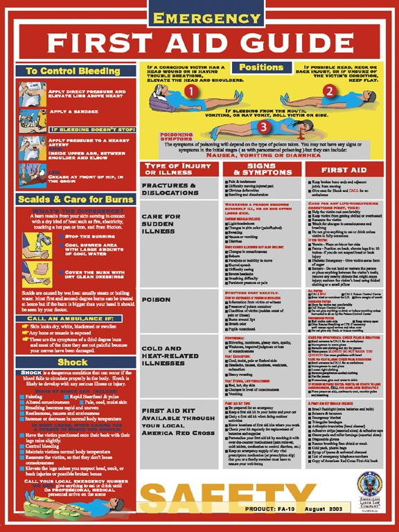 8 Images of Red Cross First Aid Guide Printable