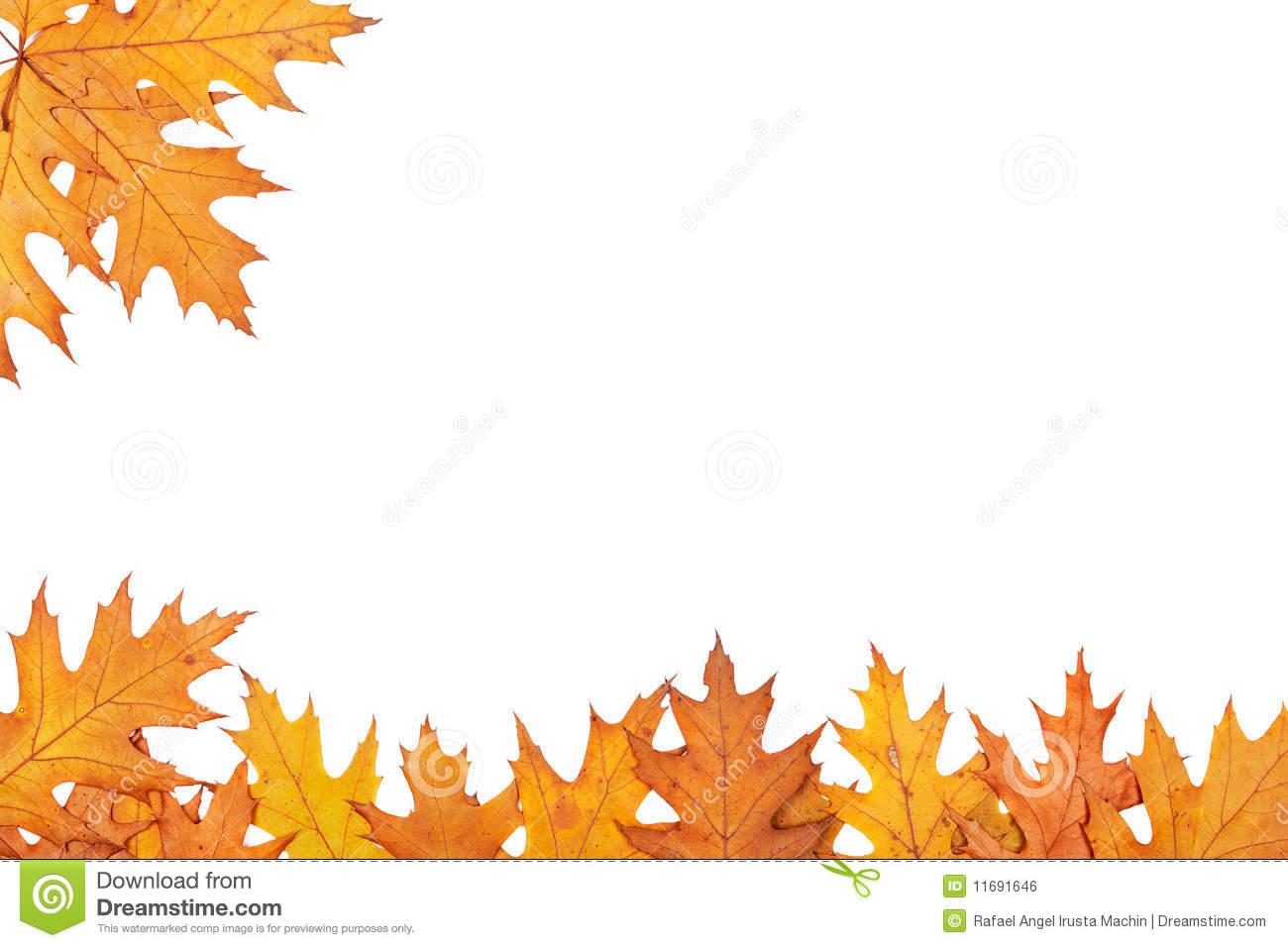 Best Images of Free Printable Fall Borders Clip Art - Autumn ...