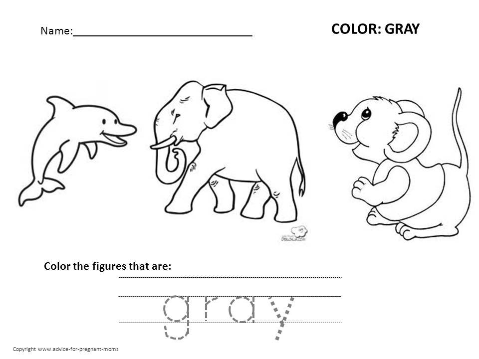 Worksheets Color Worksheets Free 5 best images of preschool color worksheets printable free colors